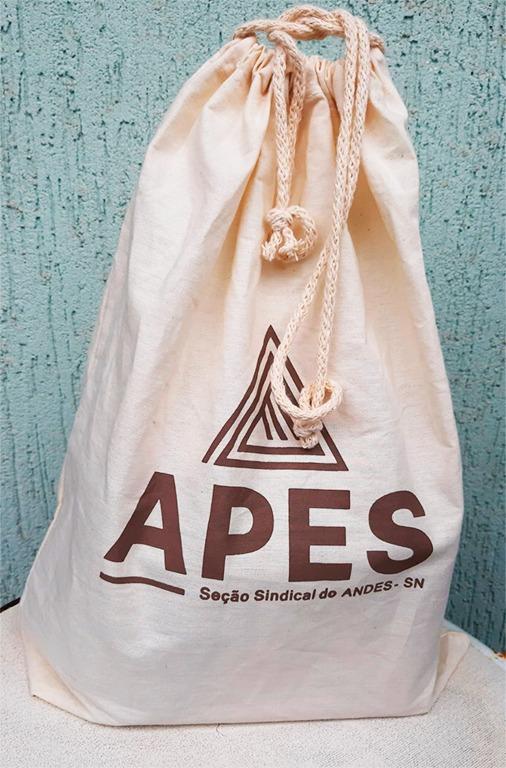 Read more about the article APES envia brinde para docentes filiados